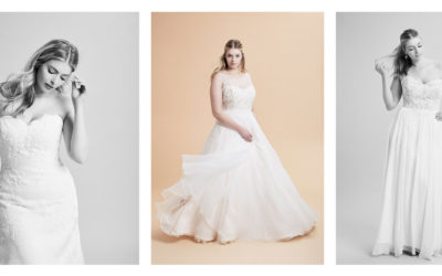 Curve Couture by Anne Barge Trunk Show